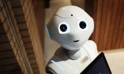 Allt fler företag robotiserar – så blir resultatet
