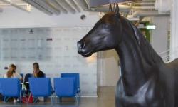 I Helsingborgs Mindpark växer företagen